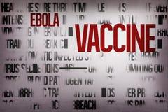 Произведенная цифров группа слова ebola Стоковое Изображение RF
