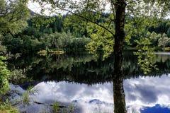 произведенное компьютером безмолвие озера изображения Стоковые Изображения RF