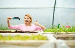 Производитель почвы производитель плодородной почвы индустрия производителя почвы женщина представляет большой палец руки показа  стоковые изображения rf