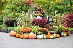 Производит от сбора падения используйте для того чтобы украсить сад стоковое фото