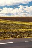 Производство энергии способное к возрождению генератора энергии ветротурбины Стоковые Изображения