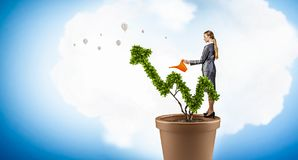 Проинвестируйте для того чтобы увеличить ваши доходы Мультимедиа стоковые фото