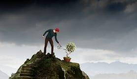 Проинвестируйте справедливо на лучшее будущее Мультимедиа Стоковая Фотография RF