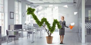 Проинвестируйте для того чтобы увеличить ваши доходы Мультимедиа стоковая фотография