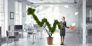 Проинвестируйте для того чтобы увеличить ваши доходы Мультимедиа стоковое фото rf