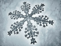 Проиллюстрированная снежинка Стоковое Изображение RF
