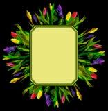 Флористическая рамка Стоковое Изображение RF