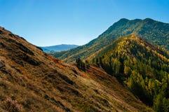 Пройдите дальше заросшие лесом холмы Стоковые Изображения