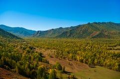 Пройдите дальше заросшие лесом холмы Стоковое Изображение