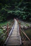 Пройдите воду Стоковые Фотографии RF
