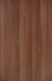 прокатанный полом грецкий орех картины Стоковая Фотография