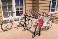 Прокат велосипедов коллежа соединения стоковое изображение rf
