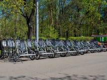 Прокат велосипеда в парке Стоковое Изображение RF