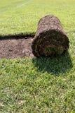 Прокладка травы Стоковые Изображения RF