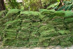 Прокладки травы, стог Стоковая Фотография RF