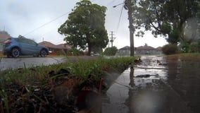 Проливной дождь и хмурое небо сток-видео