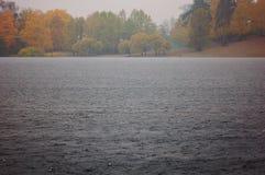 Проливной дождь на озере с деревьями осени на береге Стоковые Фотографии RF