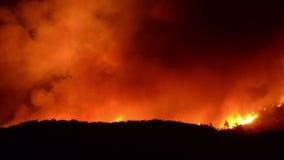 Промежуток времени большого лесного пожара на ноче - 4K