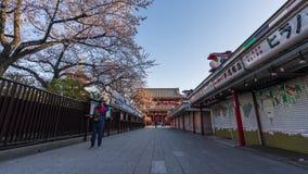 Промежуток времени вишневых цветов весны на воротах Hozomon виска Sensoji с неопознанным туристом, Токио, Японией видеоматериал