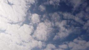 Промежуток времени плотных и компактных белых облаков циррокумулусов голубым летом сток-видео
