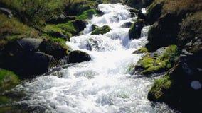 Промежуток времени речной воды природы акции видеоматериалы