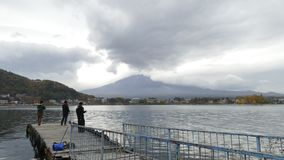 Промежуток времени Mt Mount Fuji с цветами падения в Японии видеоматериал