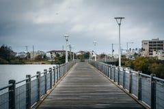 Променад над падубом озера, в Virginia Beach, Вирджиния стоковые фото