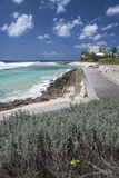 Променад на утесах Hastings, Барбадос Стоковое Изображение RF