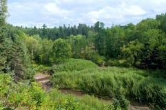 Промоина реки в парке штата Джэй Cooke стоковое изображение rf
