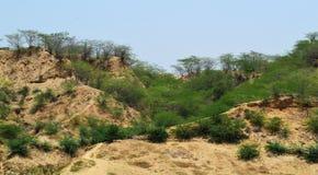 Промоины chambal стоковые изображения rf