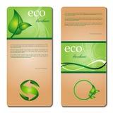 промотирование eco брошюры Стоковые Изображения