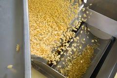 Промышленное производство автоматизированной pastaon фабрики еды Стоковые Фото