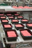 Промышленное производство продуктов питания стоковое фото rf