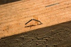 Промышленный штапель металла выступая от древесины макрос стоковое изображение rf