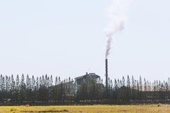 промышленный курить труб Стоковые Изображения RF