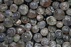 Пронумерованные прерванные древесины Стоковые Фотографии RF