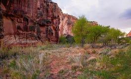 Прописные стены каньона красного песчаника рифа стоковое изображение