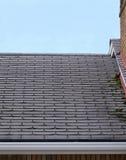 пропускающий влагу крыша Стоковое Изображение RF