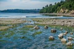 Пропуская поток на парке штата соленой воды стоковая фотография rf