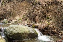 Пропуская поток Стоковое Изображение RF