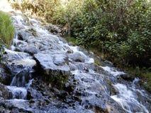 Пропуская река над камнями в лесе стоковые фотографии rf