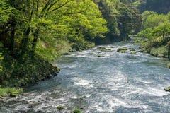 пропуская река Стоковое Изображение RF