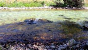 Пропуская река, Munzur Tunceli сток-видео