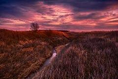 Пропуская луга Стоковая Фотография RF
