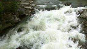 Пропуская ясная речная вода течет с белым и прозрачные пузыри с брызгают сток-видео