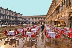 Пропуски молодой женщины через красные стулья исторического café в середине площади Марка Сан затопили стоковые изображения