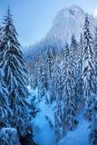 Пропуск Вашингтон Snoqualme горы снежка потока сини льда Snowy Стоковое Изображение RF