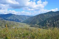 Пропуск 1400m Chike-Taman, Россия, республика Altai стоковое фото rf