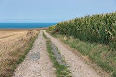 Проселочная дорога вдоль нивы около побережья Normandie, Франции Стоковая Фотография RF