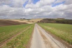 проселочная дорога в апреле Стоковая Фотография RF
